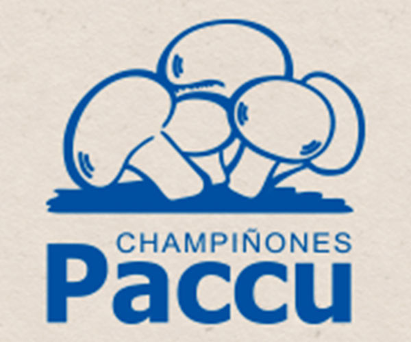 Champiñones-paccu